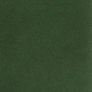 Kireina Leaf